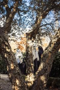 sughera in monastero