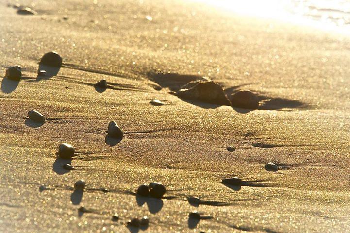 cammino nel deserto